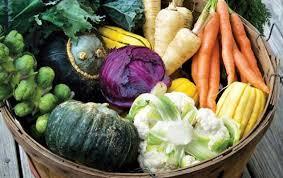 Dieta Settimanale Vegana : Menù settimanale vegan versione autunnale il goloso mangiar sano