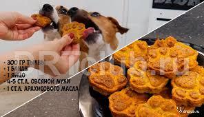 Вкусняшки и <b>лакомства для собак</b>: чем побаловать питомца