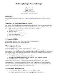 sample resume sales director in  seangarrette cosample resume  s