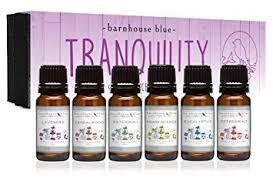 Amazon.com: Premium Grade Fragrance Oil - Gift Set - 6/<b>10ml</b> Bottles