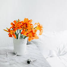 Lily <b>Flower</b> Colour, Meaning and Symbolism | Fresh <b>Flowers</b>