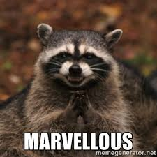 marvellous - evil raccoon | Meme Generator via Relatably.com