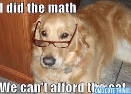 Funny-puppy-memes (3) - EWallpapersonline via Relatably.com