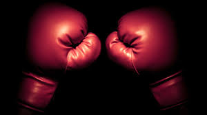 Image result for free image boxing gloves