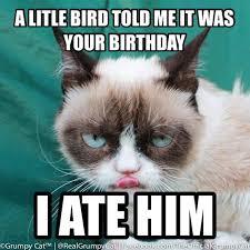 GRUMPY CAT on Pinterest   Grumpy Cat Birthday, Grumpy Cat Meme and ... via Relatably.com