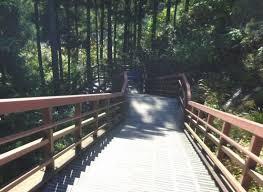 「滑津大滝」の画像検索結果