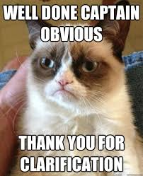 well done captain obvious thank you for clarification - Grumpy Cat ... via Relatably.com