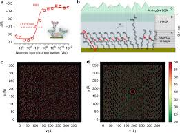 Single-<b>molecule</b> detection with a millimetre-sized transistor   Nature ...