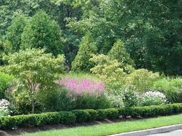 Small Picture New Jersey Perennial Garden Perennial Flowers New Jersey New