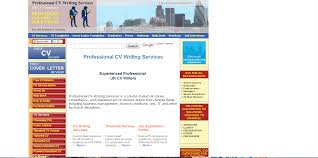 professional essay writing services com