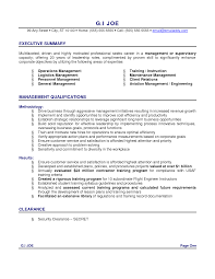 profile resume profile summary template resume profile summary ideas