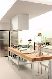 minimalist kitchen island steel extractor