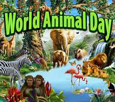 Image result for world animal day