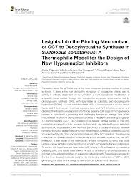 (PDF) Insights in the Binding Mechanism of GC7 in Sulfolobus ...