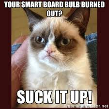 Your SMART Board bulb burned out? Suck it up! - Tard the Grumpy ... via Relatably.com