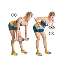 Image result for woman bent over row workout