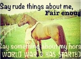 Barrel Racing Quotes on Pinterest | Barrel Racing, Barrel Racing ... via Relatably.com