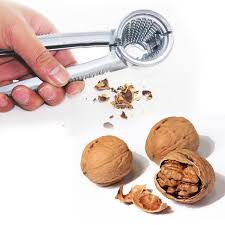 <b>Crack almond Walnut Pecan</b> Hazelnut Hazel Filbert Nut Kitchen ...