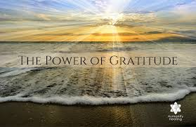 the power of gratitude humanity healing network