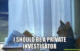 I should be a private investigator - Sophisticated Cat | Make a Meme via Relatably.com