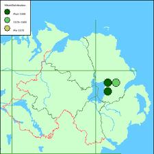 Ranunculus fluitans Lam. - River Water-crowfoot :: Flora of Northern ...