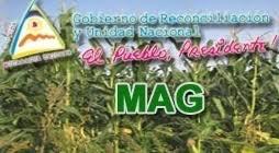 http://www.magfor.gob.ni/