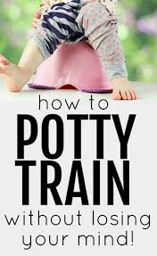 best ideas about potty training charts potty how to potty train out losing your mind