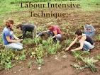 labour-intensive