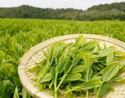Магазин китайского чая «357 грамм»