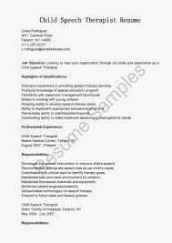 speech therapy resume speech therapy resume 3932