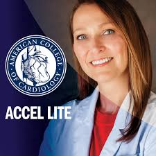 ACCEL Lite: Featured ACCEL Interviews on Exciting CV Research