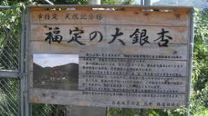「田辺市中辺路町福定銀杏」の画像検索結果