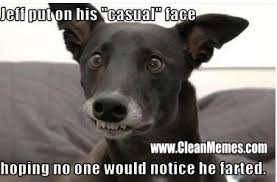funny dog memes clean - Google Search | funny things | Pinterest ... via Relatably.com