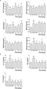 Unraveling the Novel Protective Effect of Patchouli ... - Frontiers