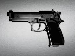 a criminologist s case against gun control com