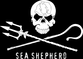 Sea <b>Shepherd</b>