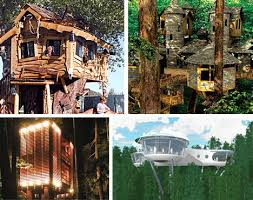Amazing Tree Houses  Plans  Pictures  Designs  Ideas  amp  Kits     Amazing Creative Unique and Unusual Treehouse Designs