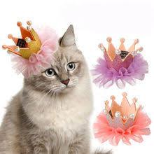 ALMO NATURE <b>ALMO NATURE CAT CLASSIC</b> CUISINE for adult ...