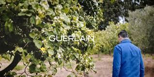 <b>Guerlain</b> Parfumeur ⋅ Créateur de Parfums ⋅ <b>GUERLAIN</b>