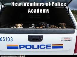 New members of the police academy | Funny Dirty Adult Jokes, Memes ... via Relatably.com