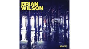 <b>Brian Wilson</b>: <b>No</b> Pier Pressure — review   Financial Times
