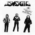 If Swallowed Do Not Induce Vomiting album by Budgie
