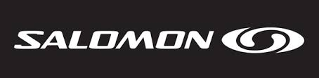 Image result for salomon logo
