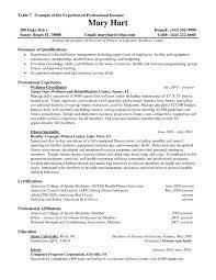 marketing resume format marketing executive resume sample sample resume format for experienced it professionals acbb resume format for marketing manager pdf marketing executive resume