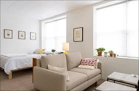 studio apartment furniture. Furniture Ideas For Studio Alluring Apartments Apartment