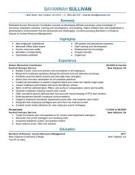 hr recruiter resume objective examples best online resume hr recruiter resume objective examples resume objective statement examples money zine hr resume template sample resume
