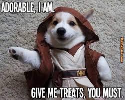 adorable I am dog meme - Memepile via Relatably.com