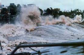 「1988 Hurricane Gilbert」の画像検索結果