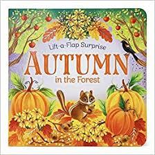 Autumn in the Forest (Lift-a-Flap Surprise ... - Amazon.com