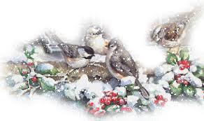 """Résultat de recherche d'images pour """"gifs d'oiseaux animés dans la neige"""""""